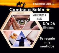 33 Días de camino hacia Belén: Sal de Tu Cielo, (Día 26) P.Guillermo Serra, L.C.