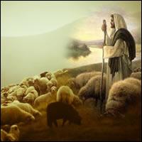 Convivir como Jesús; XVI Domingo Ordinario