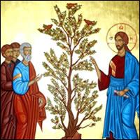 No se puede anunciar el evangelio de Jesús sin el testimonio concreto de la vida.