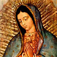 ¡Feliz Fiesta de la Virgen de Guadalupe!