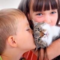 Niños y animalitos