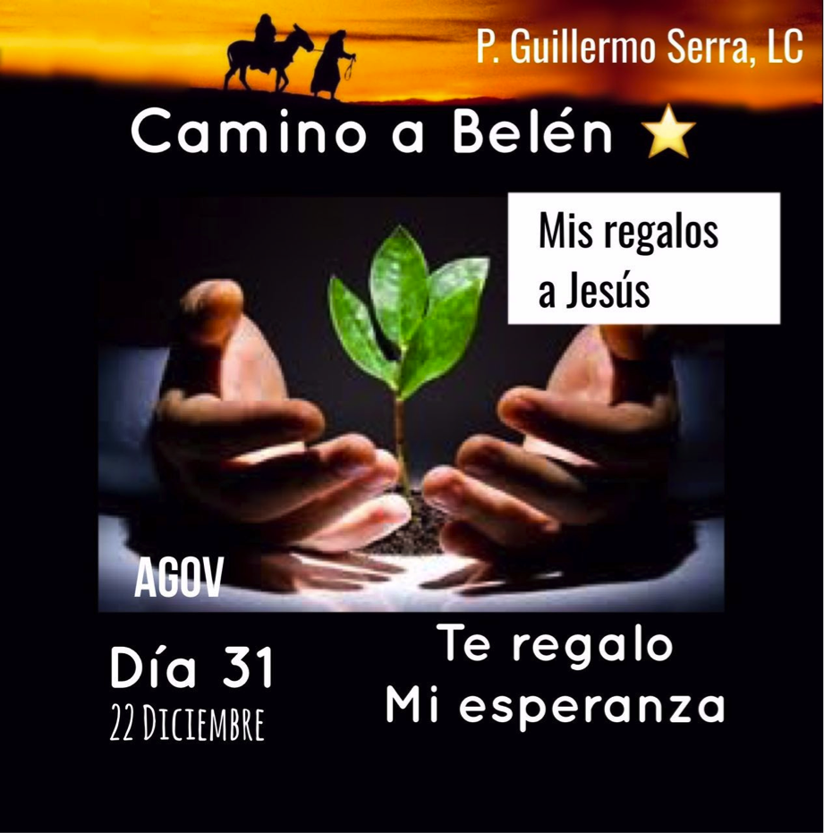 """33 Días camino hacia Belén: Sal de Tú Cielo, (Día 31) P. Guillermo Serra, L.C."""""""