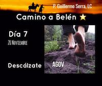 33 Días  de camino hacia Belén. Sal de Tú Cielo Día 7:  P. Guillermo Serra L.C.