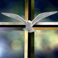 Espíritu Santo, verdadero protagonista de la Iglesia