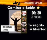 """33 Días de camino hacia Belén: Sal de Tú Cielo, (Día 30): """"P. Guillermo Serra, L.C."""""""