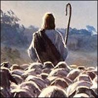 Qué hace un pastor.