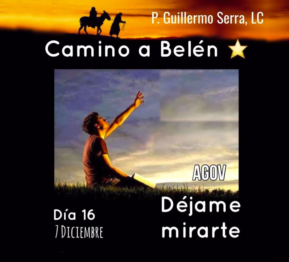 """33 Días camino hacia Belén: Sal de Tú Cielo, (Día 16) """"Padre Guillermo Serra,L.C."""""""