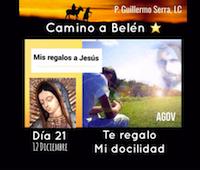 """33 Días camino hacia Belén; Sal de Tú Cielo, (Día 21) """"Padre Guillermo Serra, L.C."""