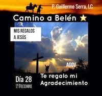 """33 Días de camino hacia Belén: Sal de Tú Cielo, (Día 28) """"P. Guillermo Serra, L.C."""""""