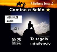 """33 Días camino hacia Belén: Sal de Tú Cielo, (Día 25) P. Guillermo Serra, L.C."""""""