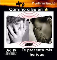 """33 Días camino hacia Belén: Sal de Tú cielo, (Día 19) """"Padre, Guillermo Serra,L.C."""""""