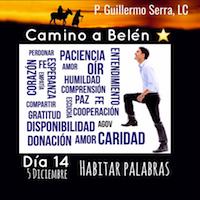 33 Días camino hacia Belén. Sal de Tú Cielo (Día 14) 2P. Guillermo Serra L..C