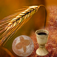 Catholic net - A New Life