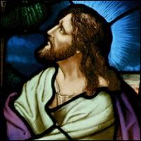 El Corazón de Dios se estremece ante el sufrimiento
