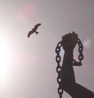 Catholicnet Libertad Un Regalo De Dios