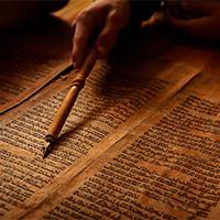 Movimientos Eclesiales: Jerarquía y profecía