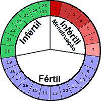Dias fertiles e infertiles calendario