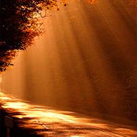 Dios, guía en el camino de la caridad