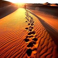 La Cuaresma: tiempo de camino, de renovación y de esperanza