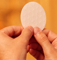 Los efectos y frutos de la Eucaristía