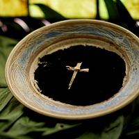 Jesús, juntos busquemos la verdadera recompensa
